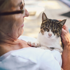 Pet adoption can make a real difference in Scottsdale.